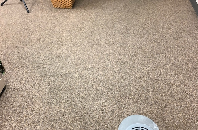 commercial carpet after cleaning