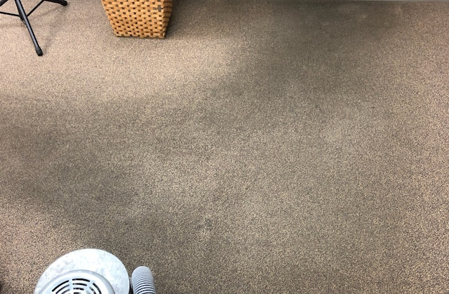 Commercial Carpet Before Cleaning